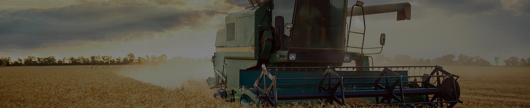 Big bags e sacconi per il Settore Agricolo | Saccheria Pliem